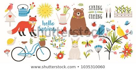 rajz · aranyos · firkák · kézzel · rajzolt · hello · tavasz - stock fotó © pravokrugulnik