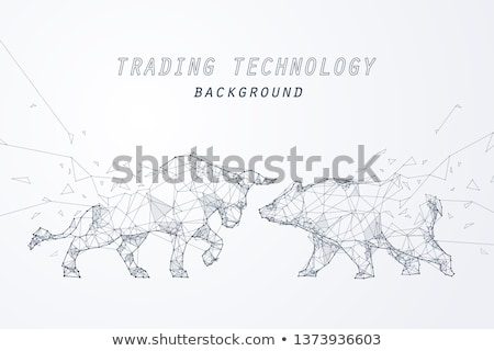 Bull Versus Bear Stock photo © albund