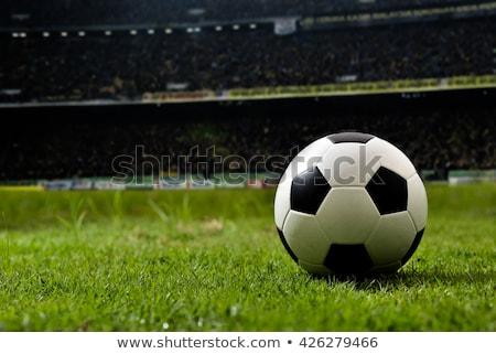 Football balle herbe ciel texture foule Photo stock © ordogz