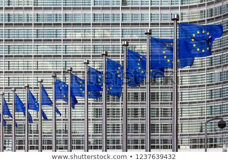 European commission with European flags Stock photo © 5xinc