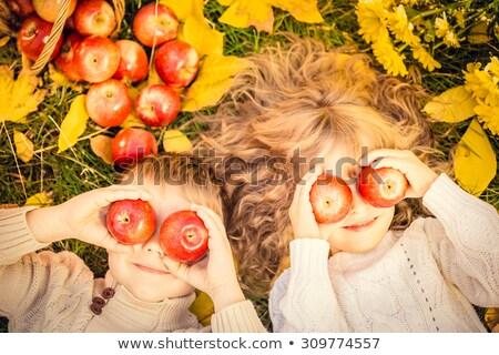 dziecko · charakter · trawy · lata · dziedzinie - zdjęcia stock © dariazu