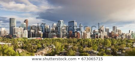 calgary   panorama of city stock photo © benkrut