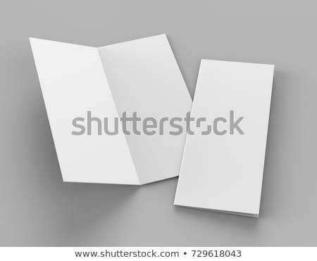 gray bi fold business brochure design template Stock photo © SArts