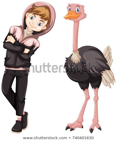 Bonitinho avestruz ilustração homem natureza Foto stock © bluering