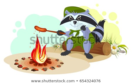 Raccoon scout fry sausages on fire Stock photo © orensila