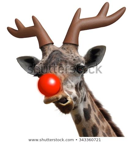 устрашающий красный Рождества фестиваля фон обои Сток-фото © SArts