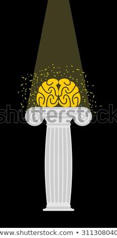 Brain on a pedestal. Light falls on  mind. Enlightenment. Vector Stock photo © popaukropa