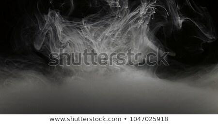 Arte blanco pintura agua humo gotas Foto stock © diego_cervo