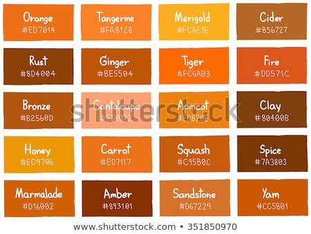 collection of fire gradient swatches Stock photo © SArts