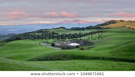 sunset over rolling grassy hills and mount diablo in northern california stock photo © yhelfman