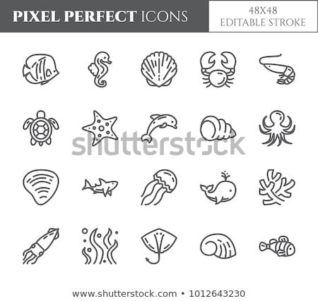 Morza Jellyfish piktogram plaży człowiek ryb Zdjęcia stock © djdarkflower