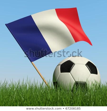 Football in france colours against grass Stock photo © wavebreak_media