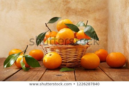 boom · vruchten · bladeren · exemplaar · ruimte · voedsel · natuur - stockfoto © melnyk