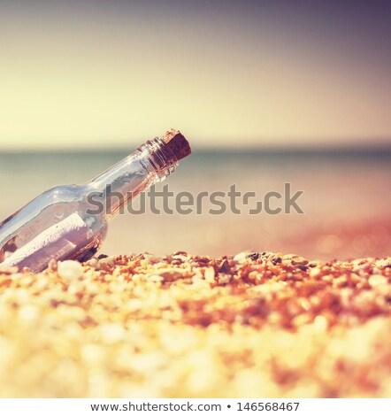 СОС бутылку сведению морем комического Cartoon Сток-фото © rogistok