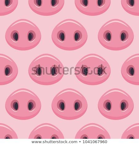 Varkens snuit boerderij Stockfoto © boggy