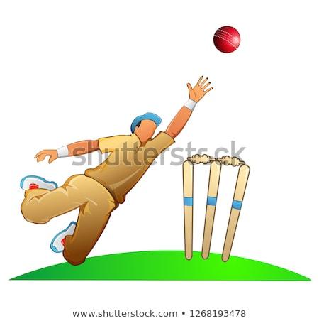 Cricketer catches a ball vector illustration design. Stock photo © Vicasso