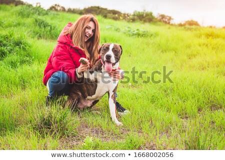 puppy · natuur · vrouwelijke · dier · oor - stockfoto © cynoclub