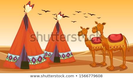 puesta · de · sol · sáhara · desierto · camellos · palmas · sol - foto stock © bluering