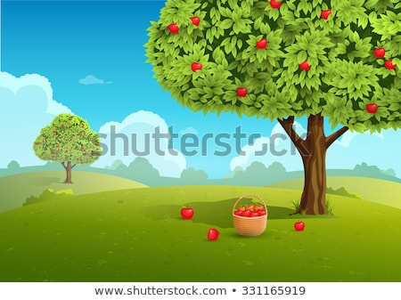 Red apple trees and apples in basket Stock photo © colematt