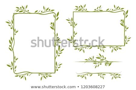 coala · natureza · ilustração · abstrato · fundo · arte - foto stock © bluering