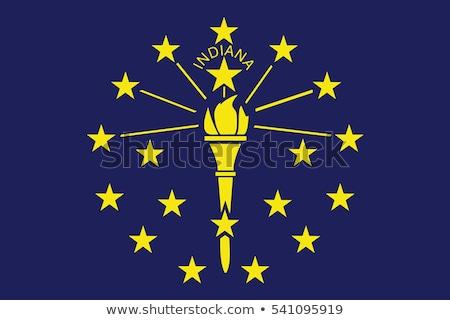 Bandeira Indiana secar terra terreno textura Foto stock © grafvision