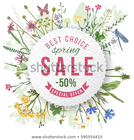 Shopping Label Big Sale With Flower Spring Vector Stock photo © mart