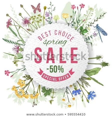voorjaar · best · korting · 30 · af · verkoop - stockfoto © robuart
