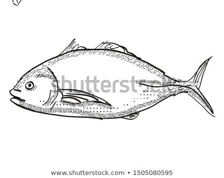 Nova Zelândia peixe desenho animado retro desenho estilo Foto stock © patrimonio