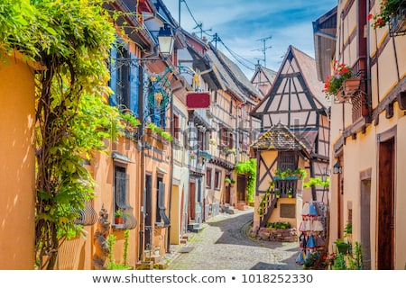 Street in Eguisheim, Alsace, France Stock photo © borisb17