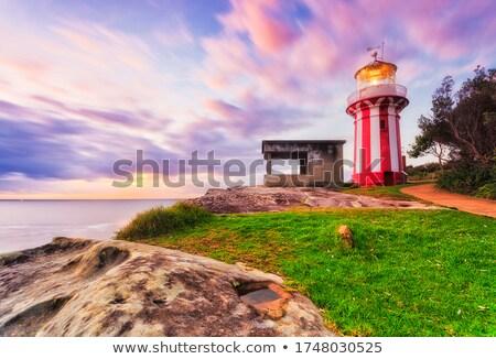 coastal erosion of sydney sandstone headland stock photo © lovleah