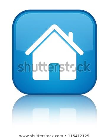 синий · домой · кнопки · изолированный · белый - Сток-фото © cidepix