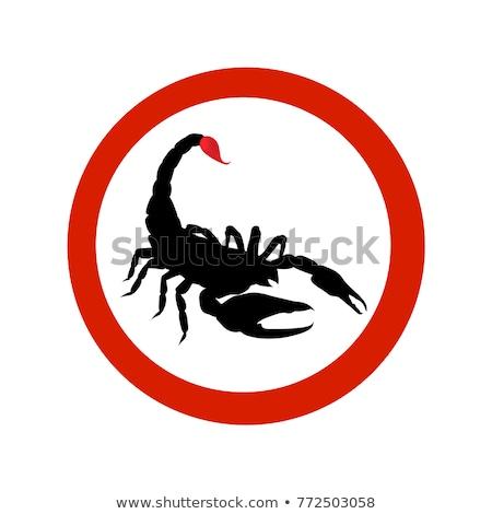 サソリ 攻撃 マスコット 黒白 実例 クモ形類動物 ストックフォト © patrimonio