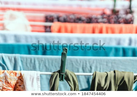 Colour clothes-pegs hung on linen rope Stock photo © RuslanOmega