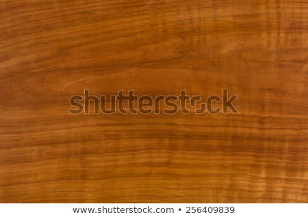 Macro detail gepolijst hout oppervlak Stockfoto © latent