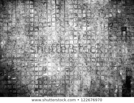 háttér · repedések · mintázott · járda · sok · barna - stock fotó © dundanim