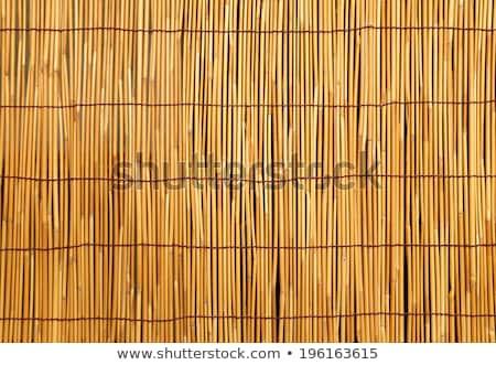 textura · capeado · amarillo - foto stock © ozaiachin