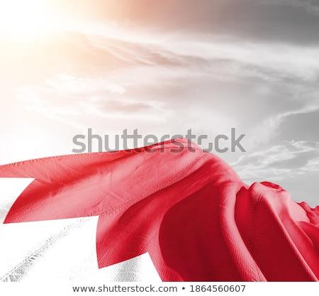 kleuren · Bahrein · jas · armen · kaart · vlag - stockfoto © perysty