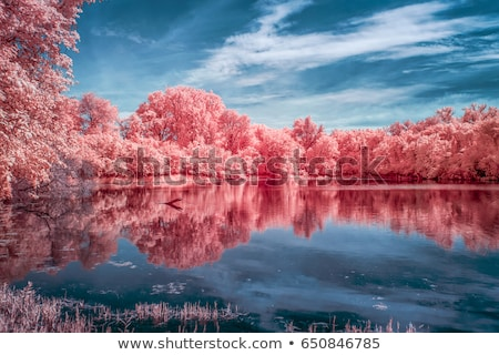 Kızılötesi manzara sahne atış filtre gökyüzü Stok fotoğraf © vlad_podkhlebnik