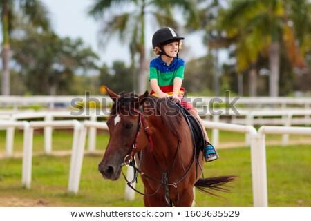 少年 · ライディング · ポニー · 馬 · 公園 · 子 - ストックフォト © photography33