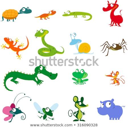 serpente · rettile · cartoon · illustrazione · divertente · animale - foto d'archivio © izakowski