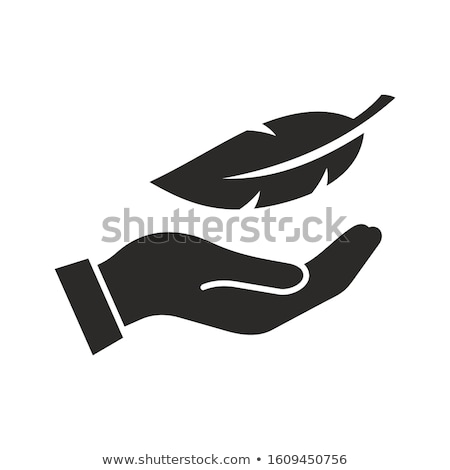 Hand and feathers stock photo © yuyang