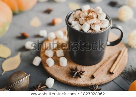 Kurk textuur geïsoleerd witte achtergrond bruin Stockfoto © stevanovicigor