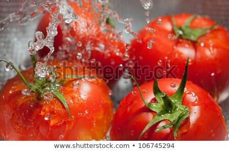 Cleaning tomatos Stock photo © Ronen