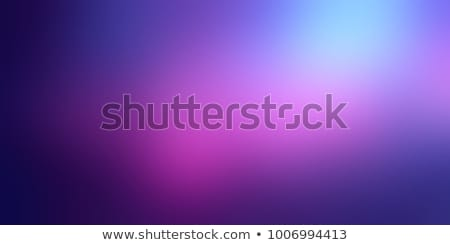 Purple-blue banners Stock photo © timbrk