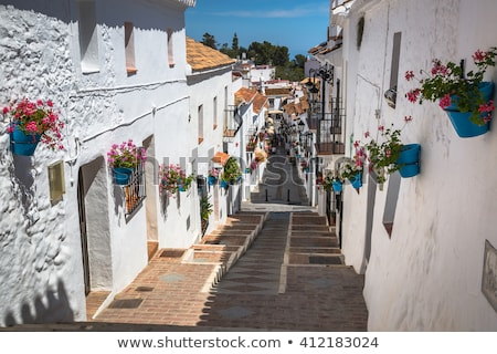 beautiful street with flowers in the mijas town spain stock photo © nobilior