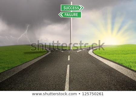 успех · провал · знак · выбора · бизнеса · трава - Сток-фото © burakowski
