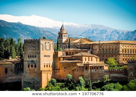 Arabesques in palace of Alhambra stock photo © serpla