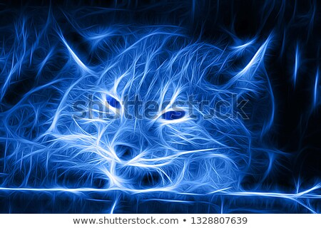 portrait looking lynx Stock photo © OleksandrO