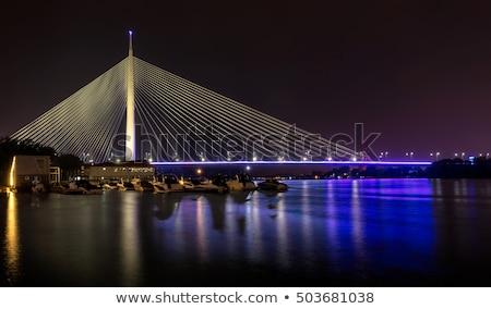 Ada bridge tower in Belgrade, Serbia Stock photo © simply