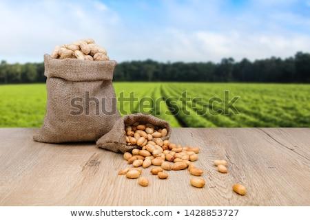Amendoim fundo amendoins conchas fresco nozes Foto stock © MSPhotographic